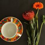 Elmer cup 4