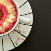 Haiku cup 3