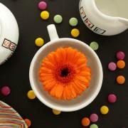 scrabble love tea set 2